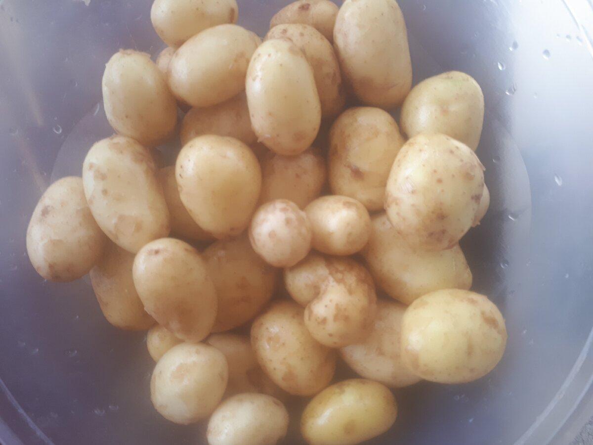 """Не выбрасывайте мелкий картофель, лучше приготовьте из него вкуснейший ужин """"Люля"""". Показываю необычную подачу"""