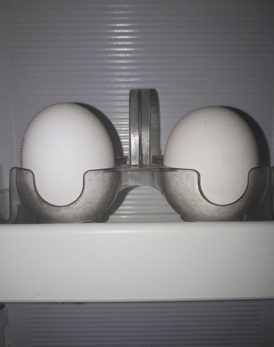 Необычное приготовление жареных яиц, вкуснее чем простая яичница. Попробуйте оригинальное блюдо и удивите своих близких
