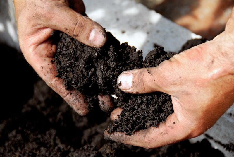 Почва. Иллюстрация для статьи используется по стандартной лицензии ©life-hacky.ru