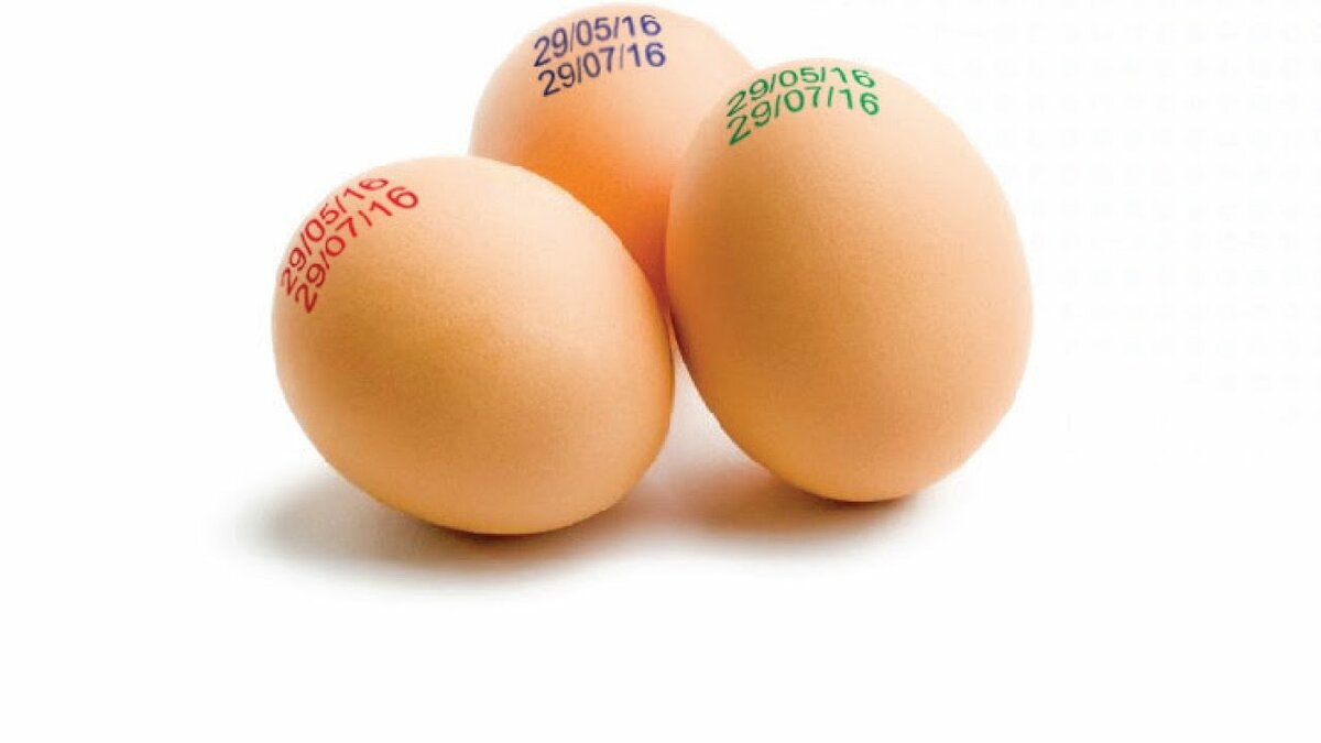Узнала, почему на куриных яйцах разный цвет маркировки. Рассказываю