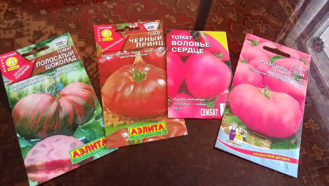 Выбор томатов для теплицы на 2021 год: сорта, которые проверены временем (что я выбрала на огородный сезон)