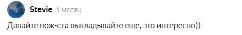 Скриншот комментария под прошлой статьей на канале РемонтДом