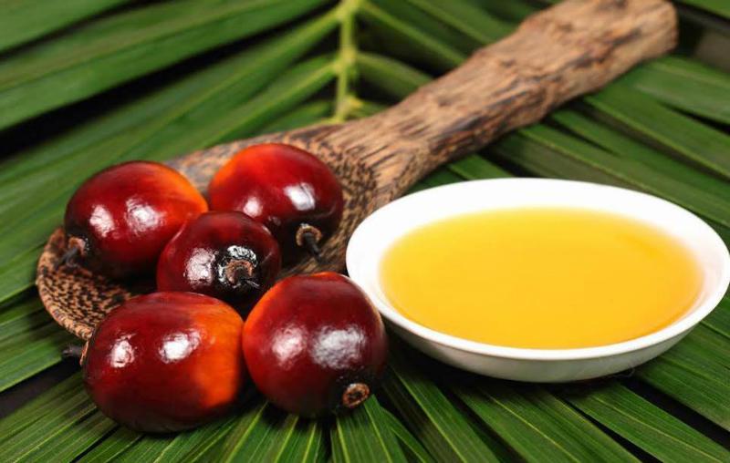 Как определить пальмовое масло