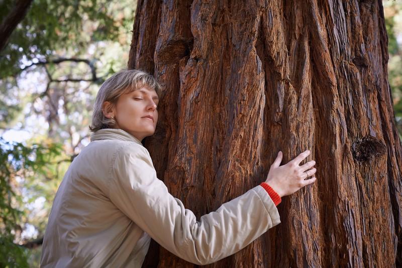 Вот что будет, если постоянно обнимать березу и другие деревья