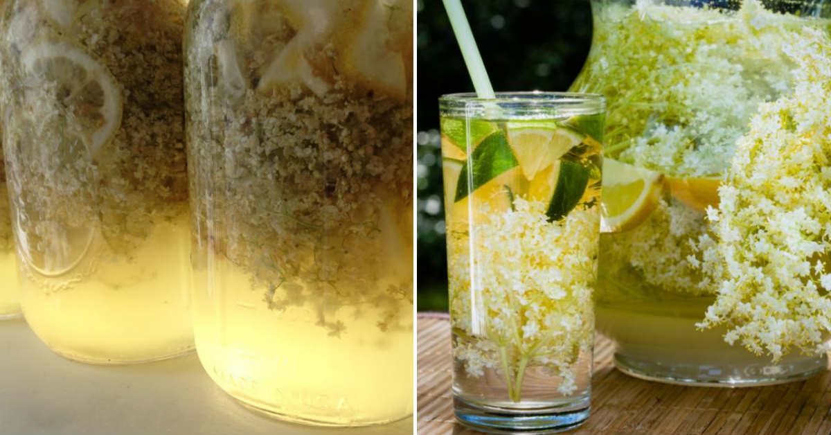 Домашний лимонад из бузины: с пузырьками и приятным цветом