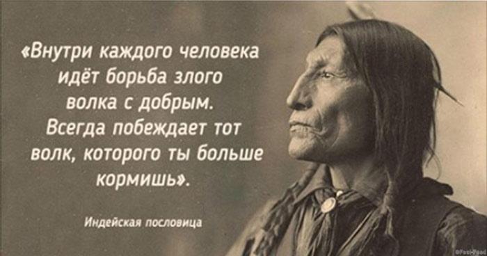 26 мудрых пословиц индейского народа